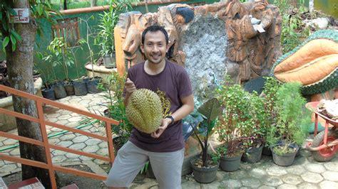 Bibit Durian Bawor Sarno makan durian bawor pak sarno mantap lalerijo
