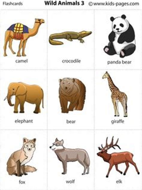 printable animal flashcards for toddlers 3 wild animals printable for poster or game cards wild