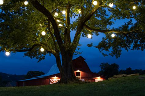 outdoor hanging tree lighting string lights post