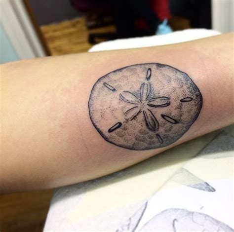 sand dollar tattoos designs 25 best ideas about sand dollar on