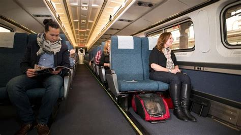 Delta Pets In Cabin by Amtrak To Allow Small Pets As Travel Companions