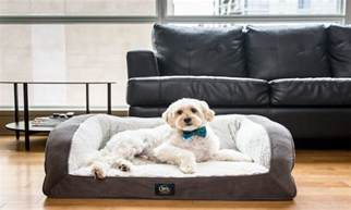 best beds for small dogs overstock