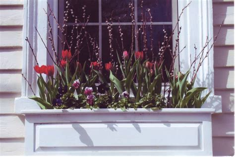 best window boxes best flowers for window boxes