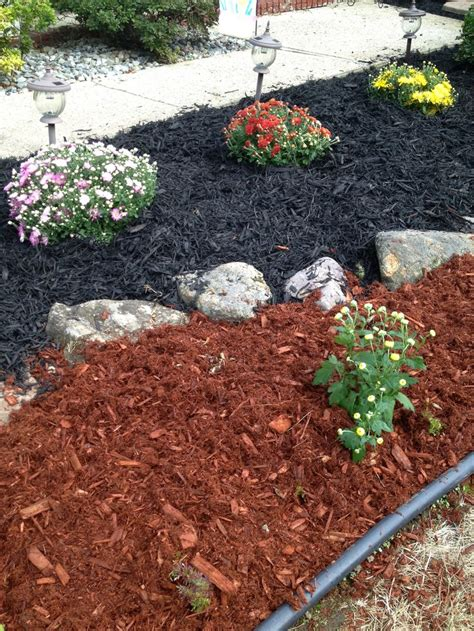 colored mulch 11 best images about colored mulch ideas on