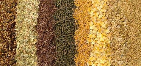 mangimi e alimenti mangimi per rivendite meridiana agri zootecnia