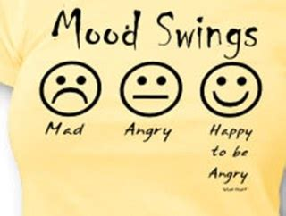 i get mood swings the amazing kid induced mood swing guy and the blog