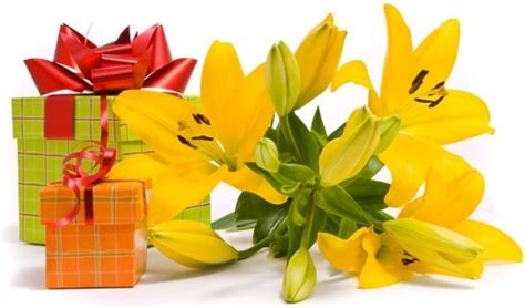 Flowers And Gifts by Happy Birthday Flower Gift Images Free Stock Photos