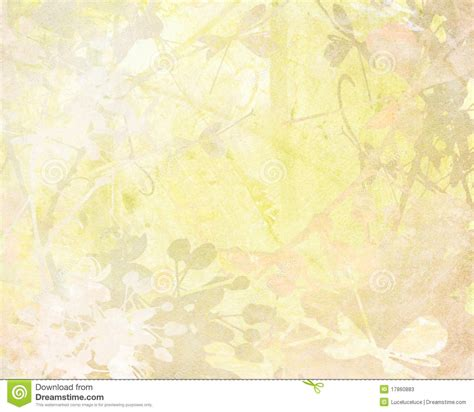 the gallery for gt pale backgrounds pale flower art on paper background stock illustration