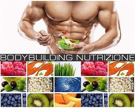 alimentazione per building bodybuilding nutrizione come creare un piano alimentare