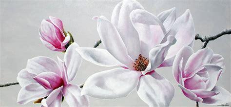 imagenes de magnolias blancas cuadro flor magnolia i en portobellostreet es
