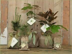 Tree Seedling Wedding Favors by Simply By Tamara Seattle Weddings Green Wedding
