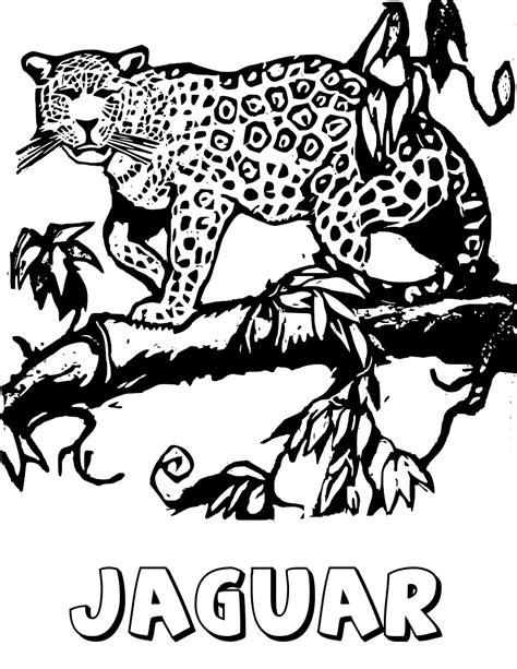 jaguar cat coloring page free jaguar clipart 1 page of public domain clip art