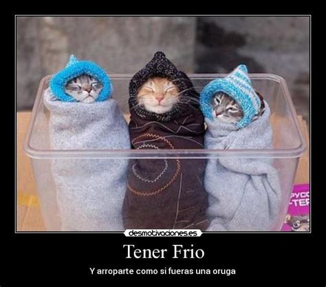 imagenes comicas de frio tener frio desmotivaciones