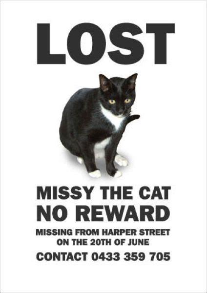 Hilarious Missing Cat Posters 19 Pics Izismile Com Lost Reward Poster Template
