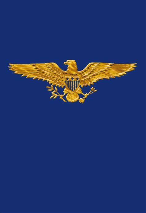 Golden Eagle Veterans Day Card   Greeting Cards   Hallmark