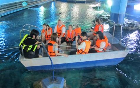 glass bottom boat and ocean feeding siam ocean world at the paragon mall in bangkok indoor