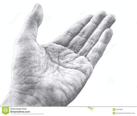 pencil drawing   hand stock photography image