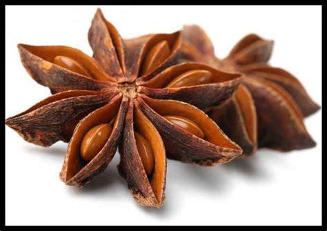 Pekak Bunga Lawang ngo hiong five spice powder