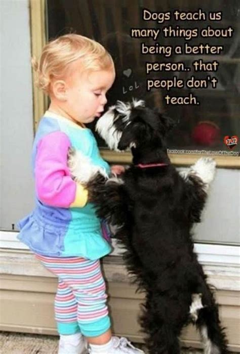 teaching humans to be s best friend without saying a word books dogs teach us many things about being a better person that