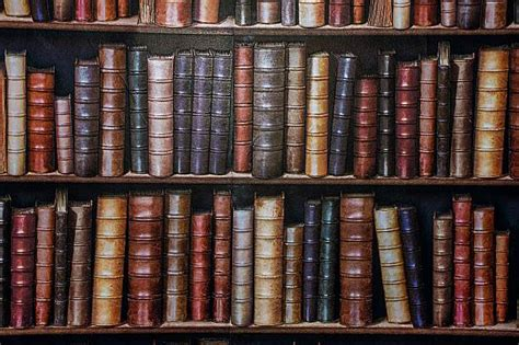 royalty free bookshelf pictures images and stock photos