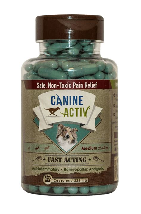 reliever for dogs safe effective medication for dogs canineactiv guthrie pet hospital