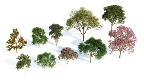 tree species laubwerk plants kit 3 for 3ds max cinema 4d