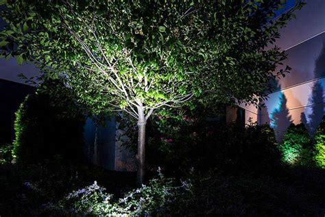 solar flood lights for trees flood lights for trees style pixelmari com