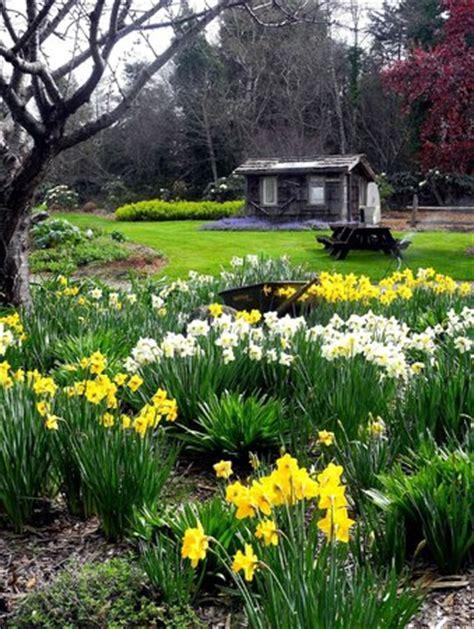 Mendocino Coast Botanical Gardens Fort Bragg Ca Hours Mendocino Coast Botanical Gardens