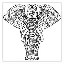 17 Meilleures Id&233es &224 Propos De &201l&233phant Indien Sur Pinterest  sketch template