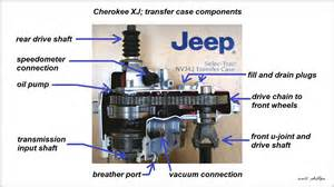 Jeep Transfer Fluid Jeep Xj 1984 To 2001 How To Replace Transfer