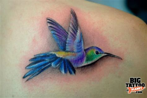 realistic hummingbird tattoos realistic hummingbird gallery