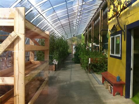 passive solar tomato house  list canmore community