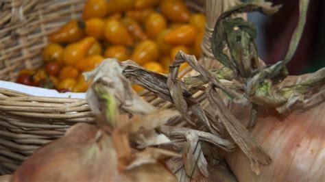 Calendã Agricultores Calendario De Mercados Ecol 243 Gicos Organizados Por Uccl