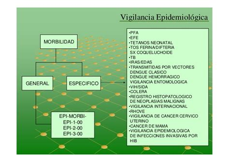 cadena epidemiologica tetanos vigilancia epidemiol 243 gica