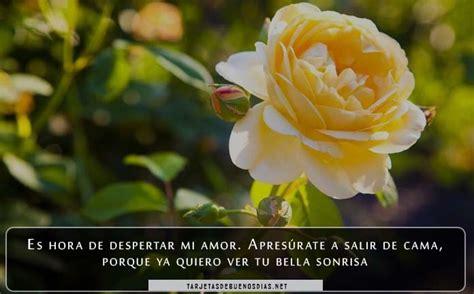 descargar imagenes bonitas de buenos dias gratis rosas bonitas de buenos d 237 as para descargar gratis