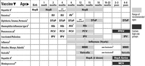 printable immunization schedule ontario 10 best photos of blank cat immunization records printable