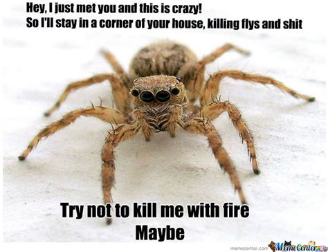 Sad Spider Meme - misunderstood spider by heltongutz meme center