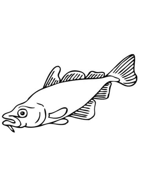 carp fish coloring pages carp fish outline coloring page coloring pages