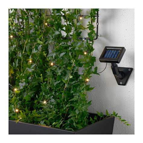 Ikea Lighting Outdoor Solarvet Led Lighting Chain With 12 Lights Outdoor Solar Powered Ikea