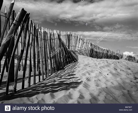 near liverpool sand dunes at formby point near liverpool on the