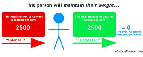 physics of the human lose weight for books calorie counting a guide to calories weight
