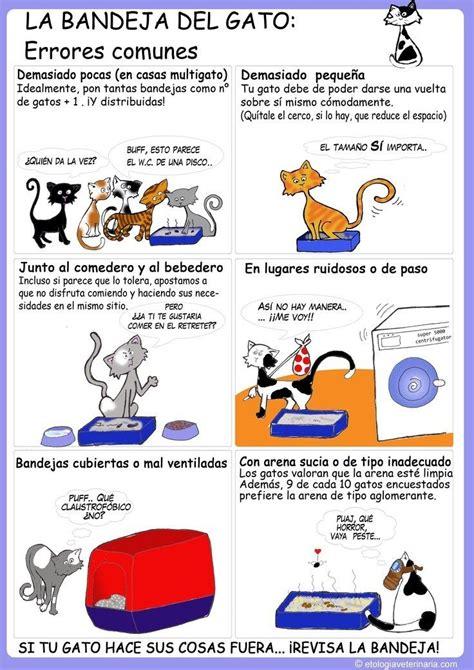los amantes de todos 8420473561 12 infogr 225 ficos pr 225 cticos que todo amante de los gatos necesita amantes de los gatos el gato