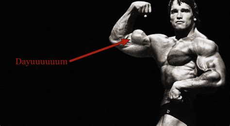 arnold schwarzenegger s total workout songs most everything you ve wanted to about your biceps