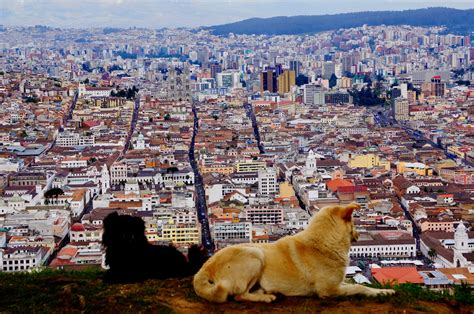 Cool Ideas by Top 20 Awesome Things To Do In Quito Travel Guide