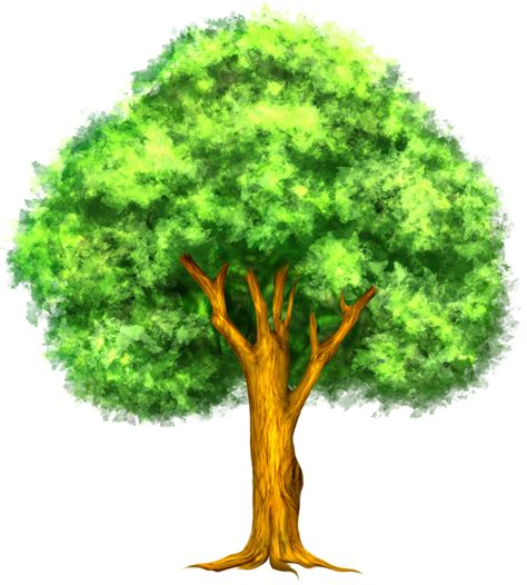 free trees clipart pictures clipartix