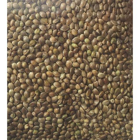 buy hemp seeds  benefits  hemp seeds buy