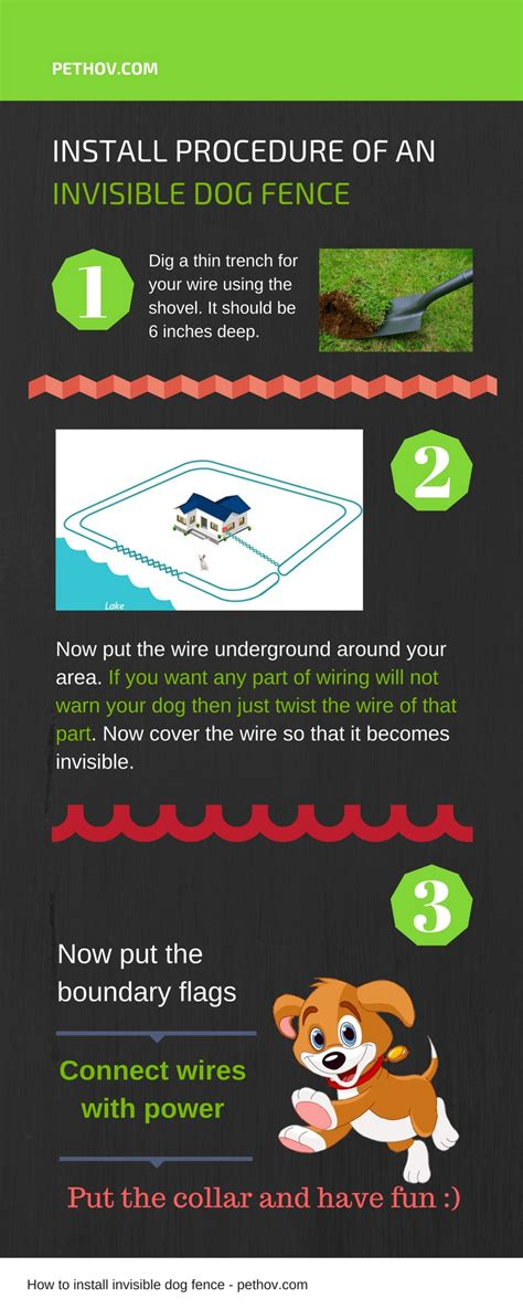 how to on invisible fence infographic how to install invisible fence pethov