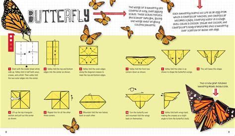 Origami For Children Book - children s book design design