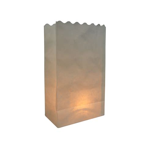 white solid color luminarias paper craft bag 10 pack