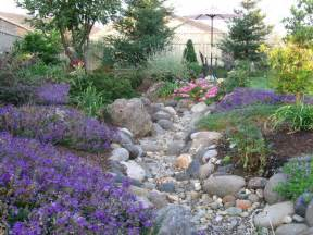 backyard creek ideas whimsical dry creek bed diy pinterest